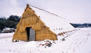 ウド小屋の冬