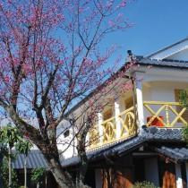 三田の魅力旧九鬼家住宅 (2)