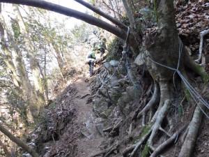 2-七曲滝への道
