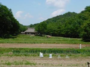 1-西の谷農舎