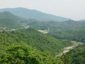 22-緑の山