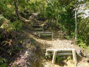7-登山道