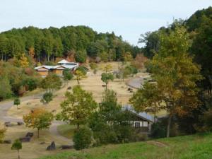 9-森林活動センター付近