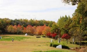深田公園(1)