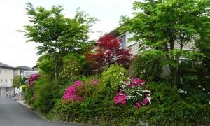 富士が丘2丁目(2)