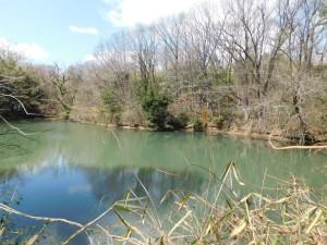 2-藤ヶ谷上池
