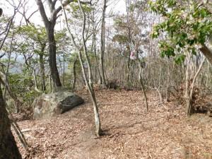 4-甚五郎山