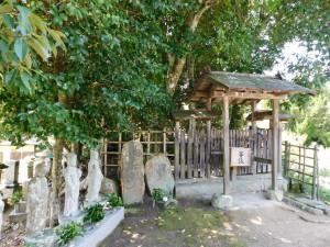 14-十二妃の墓