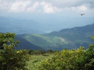14-鉢伏山への尾根