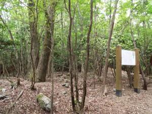 15-大岳寺跡