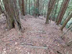 25-大乗寺方面登山道