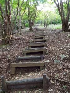 29-急階段