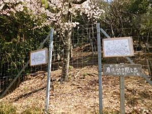 3-獣害防止ゲート