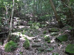 3-登山道