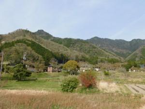 31-向山連山