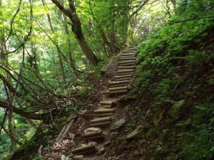 5-登山道