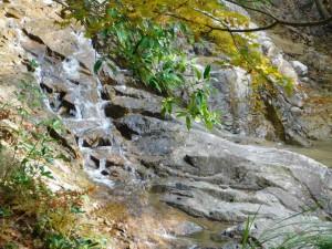 9-岩走る水