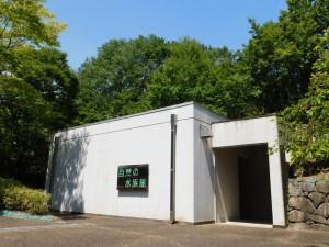 9-自然の水族館