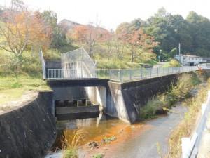 10-池尻川への流入地点